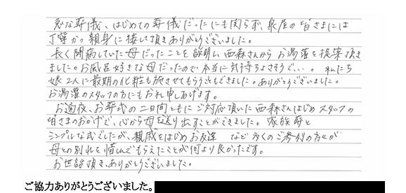 voice19
